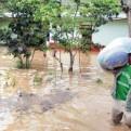 Fenómeno El Niño: reducen probabilidad de que sea de magnitud fuerte