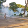 Zika: Municipalidad de Jesús María fumigó Campo de Marte por precaución