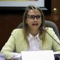 Comisión de Defensa citó a autoridades por mausoleo de Comas