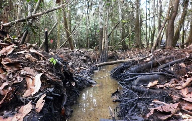 Nuevo derrame de petróleo en oleoducto Nor Peruano