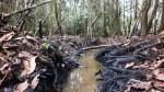 PetroPerú denunció nuevo atentado contra el Oleoducto Nor Peruano - Noticias de derrame de petróleo