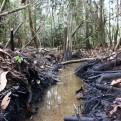 Petroperú denuncia un nuevo atentado contra el oleoducto en Loreto