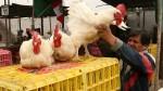 Precio del pollo se incrementó en octubre - Noticias de pollo a brasa