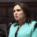 Pérez Tello respaldó designación de Eto Cruz en comisión asesora