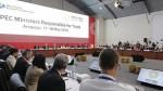 APEC: cumbre de líderes congregará a más de 8 mil visitantes - Noticias de mincetur