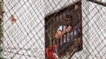 """Leopoldo López cumple 1000 días """"de resistencia"""" en prisión - Noticias de lilian thuran"""
