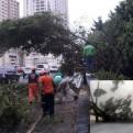Panamá: aumentan a 4 los muertos por tormenta Otto