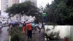 Panamá: aumentan a 4 los muertos por tormenta Otto - Noticias de viceministro rojas