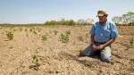 Declararán Piura en emergencia hídrica por falta de lluvias - Noticias de incendio forestal