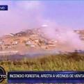 Ventanilla: incendio forestal consumió parte de los humedales