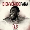 Universitario de Deportes anunció el fichaje de Luis Tejada