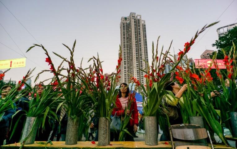Los clientes buscan flores en el mercado de flores de Año Nuevo de Victoria Park en Hong Kong el 27 de enero de 2017. (Vía: AFP)