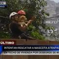 Chosica: rescatan a mascota que quedó atrapada en el techo de una vivienda