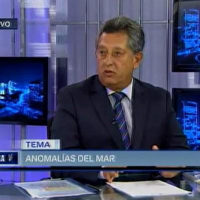 Presidente de Imarpe: El calentamiento del mar se ha dado de una manera repentina y permanente