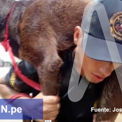 Piura: miembro del Ejército rescata a mascota de zona inundada