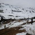 Senamhi pronostica nevadas en la sierra sur del país desde hoy