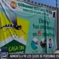 Pisco: aumentan a 98 los casos de personas afectadas por dengue