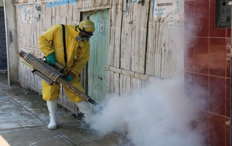 Piura: sancionarán a vecinos que no permitan fumigación en sus casas  | Actualidad