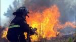 México: bombero muere al combatir voraz incendio en una refinería - Noticias de pemex